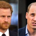 princes william,harry
