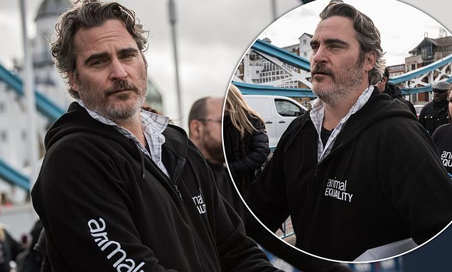 https://celebritycontent.com/2020/02/04/joaquin-phoenix-ties-himself-to-tower-bridge-and-urges-brits-to-go-vegan-hours-before-bafta-win-daily-mail-online/