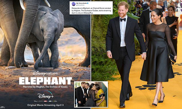 Meghan Markle's first post royal exit job revealed as she voices a Disney documentary on elephants | Daily Mail Online