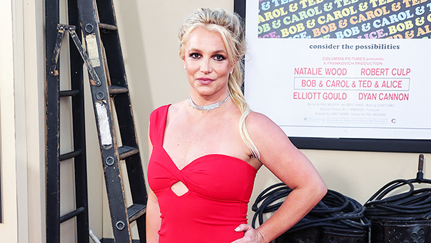 https://celebritycontent.com/2020/07/24/britney-spears-brother-bryan-speaks-out-on-free-britney-video-hollywood-life/