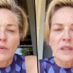 https://celebritycontent.com/2020/08/18/sharon-stone-says-her-familys-been-ravaged-by-coronavirus-and-blames-donald-trump/